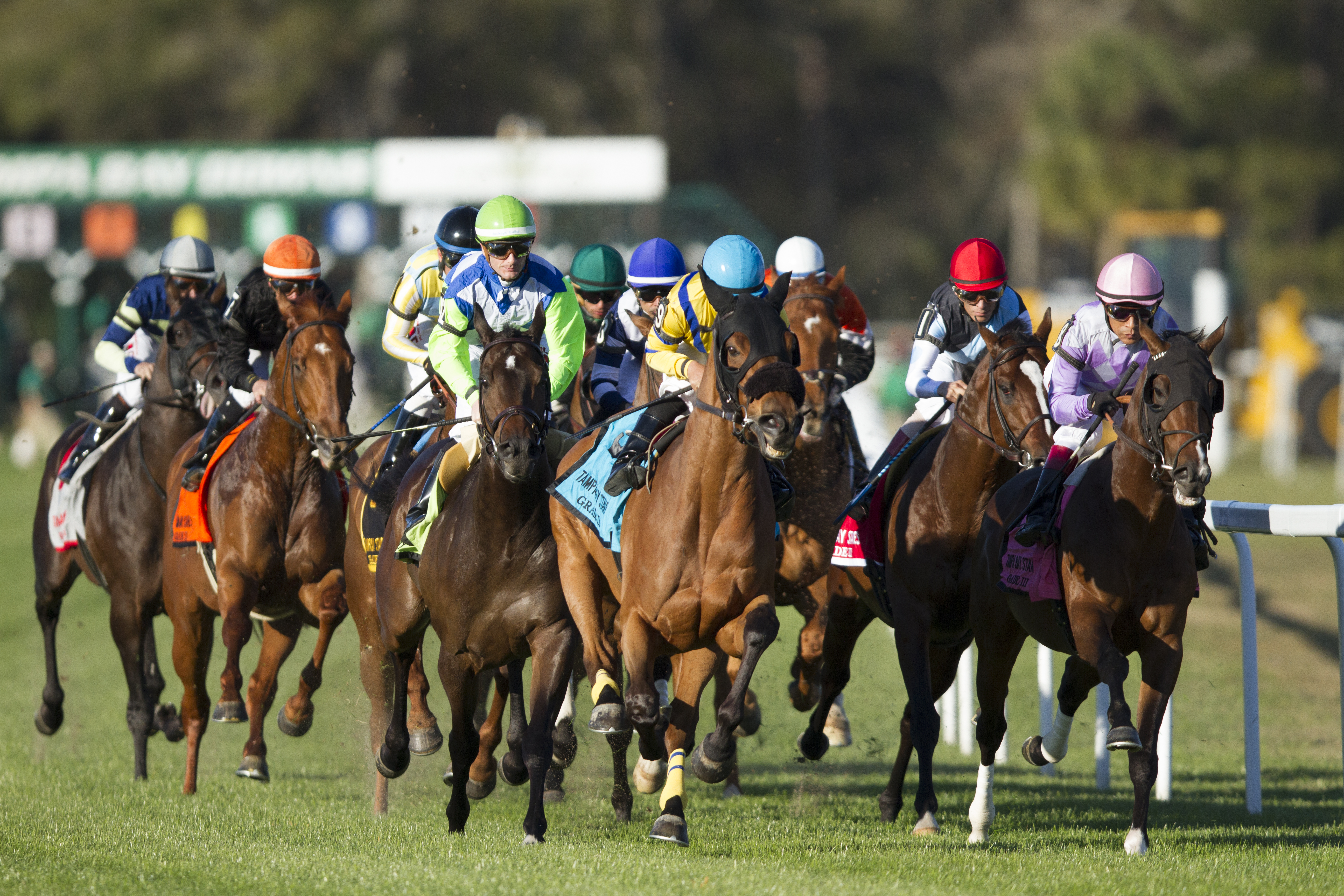 15th Annual Florida Cup Day at Tampa Bay Downs Image
